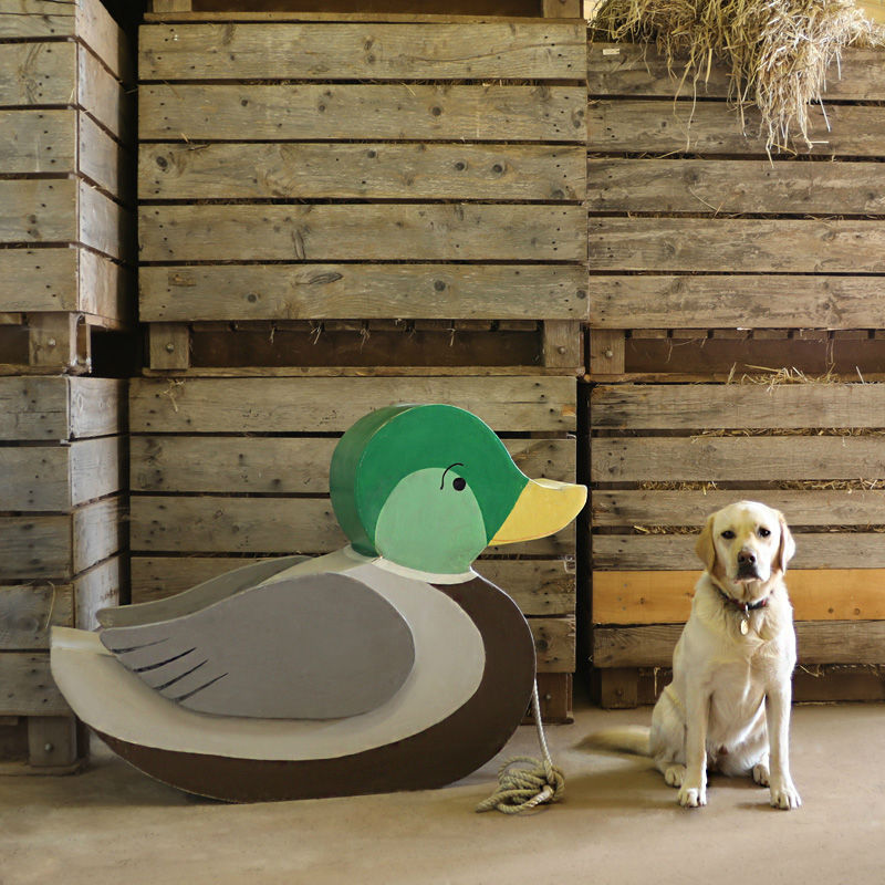 Giant Duck Toy 2
