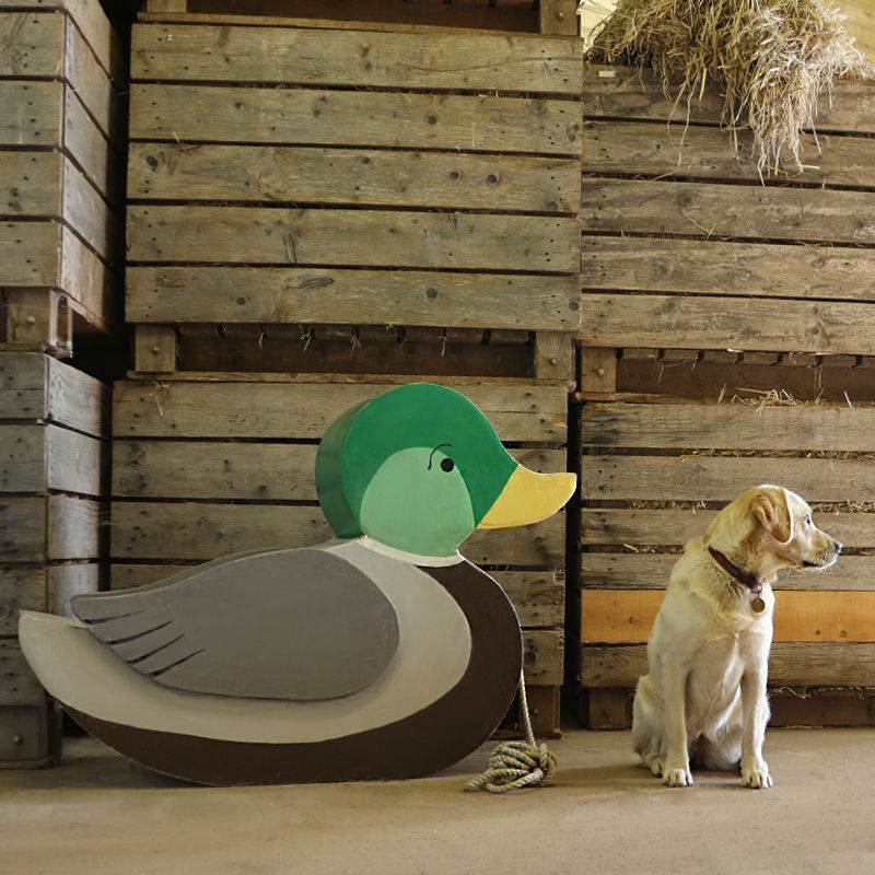 Giant Duck Toy