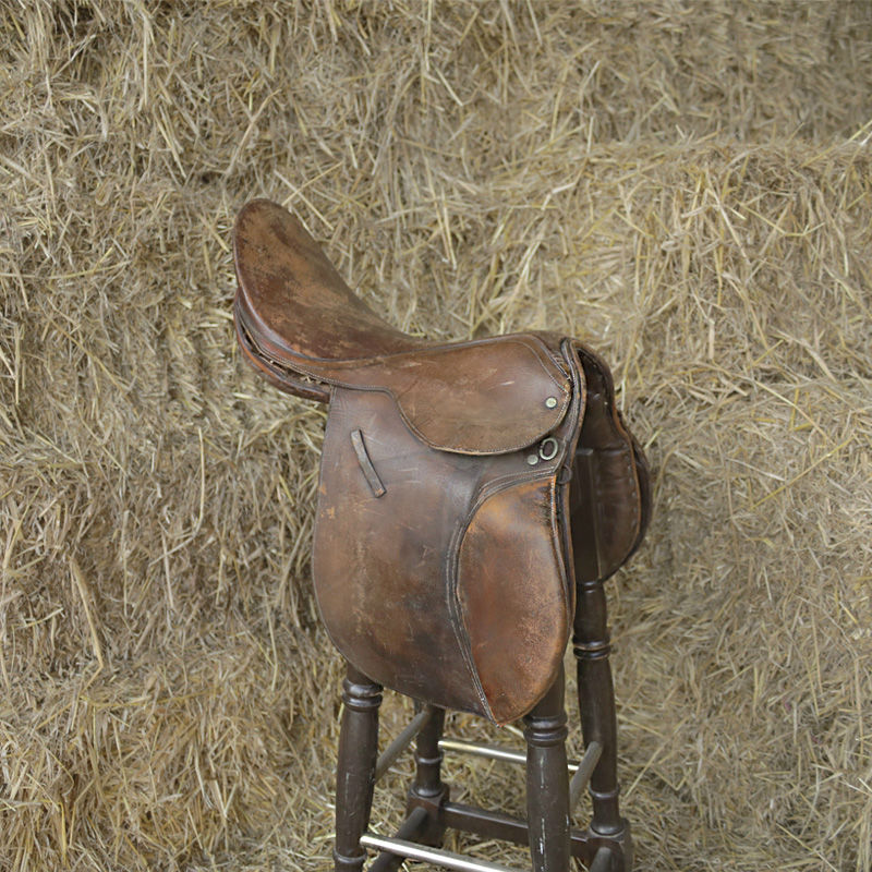 Horse Saddle Stool 2