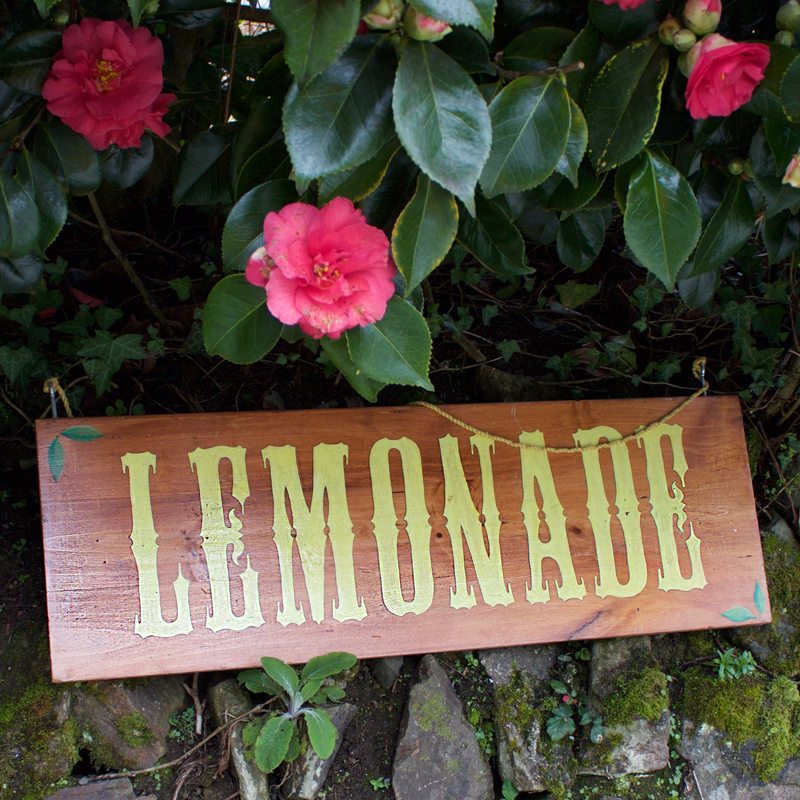 Rustic Lemonade Sign