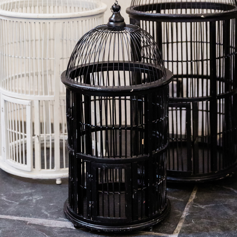 Medium Black Elf Owl Cage