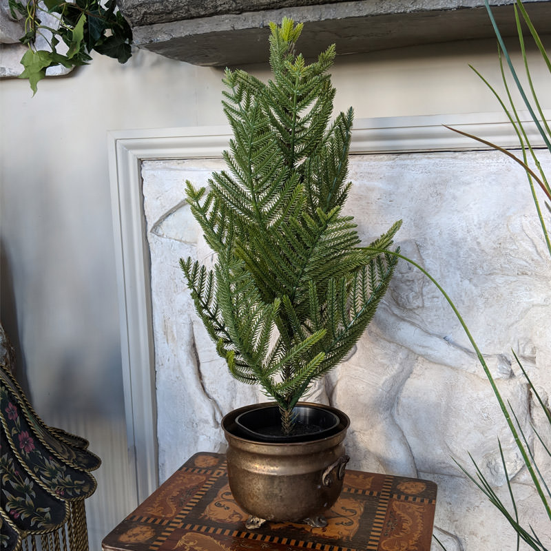 Small Fern Tree in Copper Pot