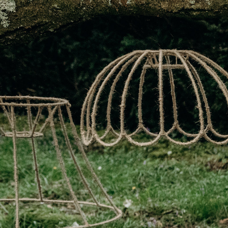 Bare Woodland Lampshade without Foliage
