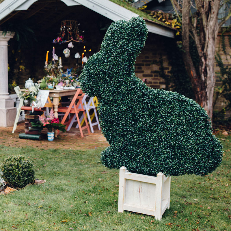 5ft Bunny Bush 2