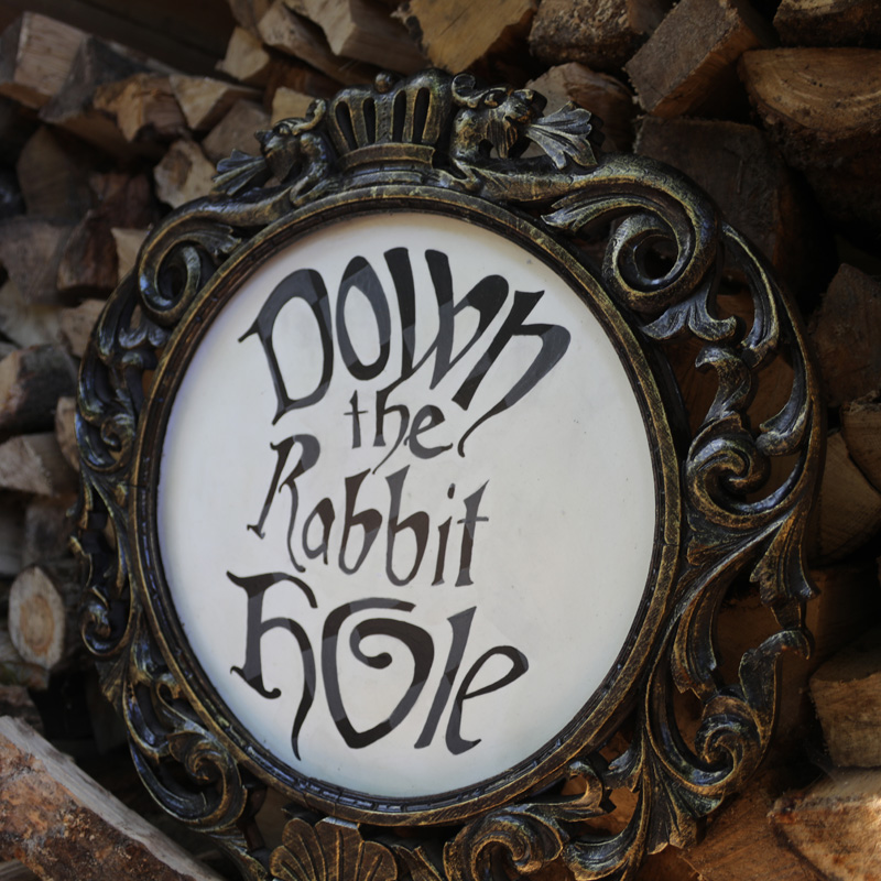 Down The Rabbit Hole Sign 2